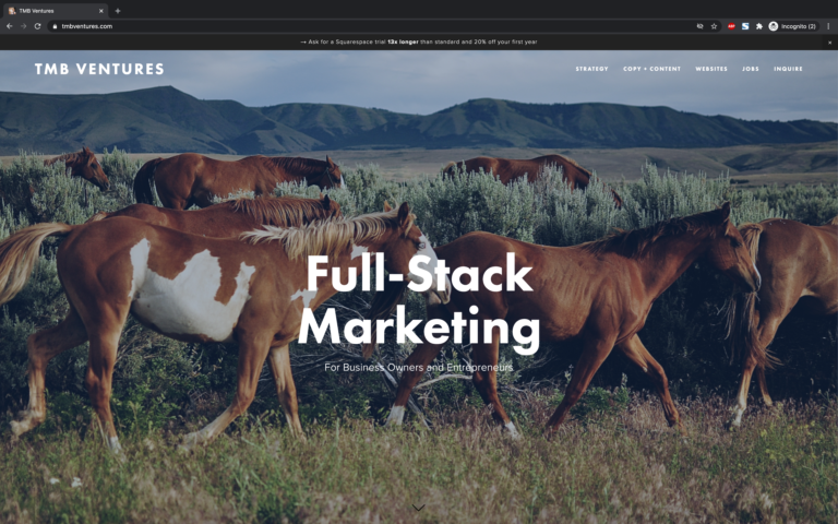 full-stack marketer for business owners